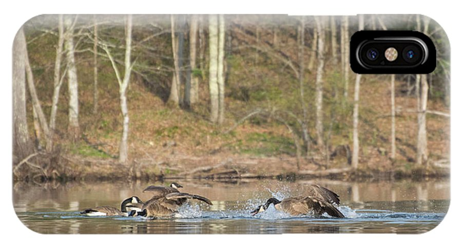Canadian Geese IPhone X / XS Case featuring the photograph Family Feud by Jan Mulherin