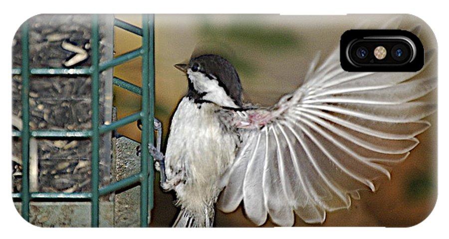 Chickadee In Flight IPhone X Case featuring the photograph Fan Dance by Faith Harron Boudreau