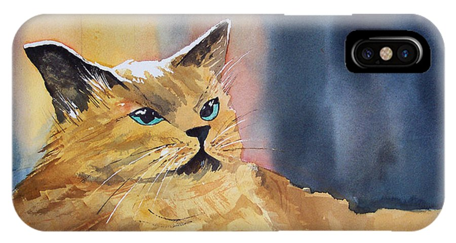 Landscape IPhone X Case featuring the painting Fat Cat by Ryan Radke