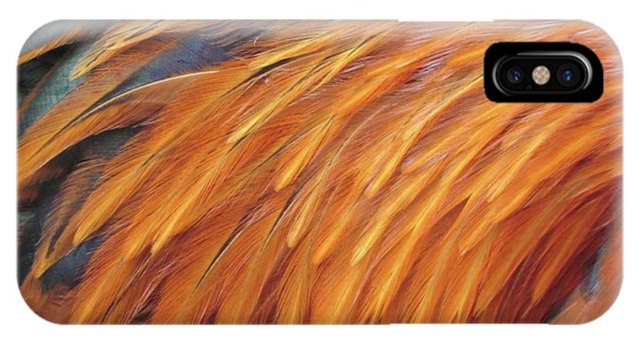 Rooster IPhone X Case featuring the photograph Feathers by David Sutter