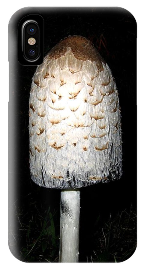 Feathery IPhone X / XS Case featuring the photograph Feathery Mushroom by Will Borden