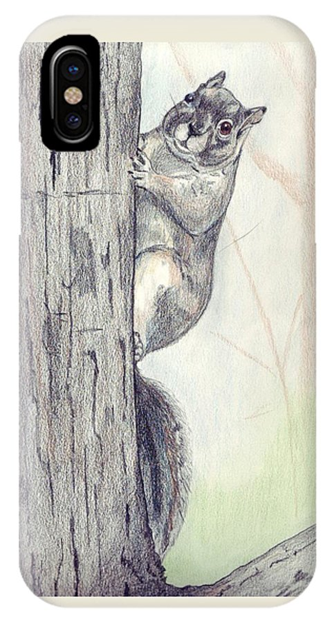 Color Pencil IPhone X Case featuring the drawing Feeder Raider by Debra Sandstrom