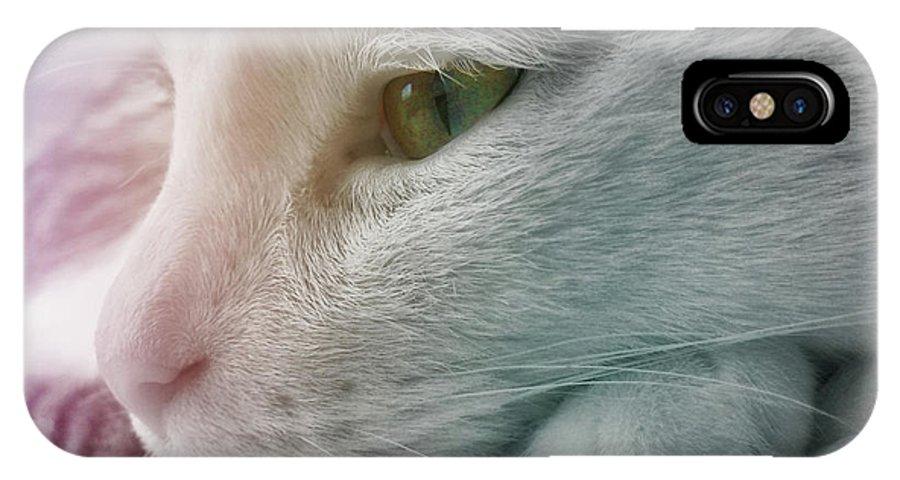 Cat IPhone X Case featuring the photograph Feline Zen by JAMART Photography