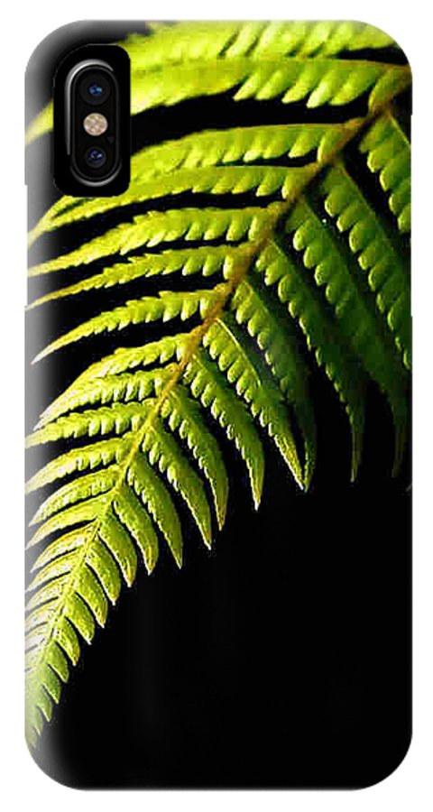 Fern IPhone X / XS Case featuring the photograph Fern by Dragica Micki Fortuna