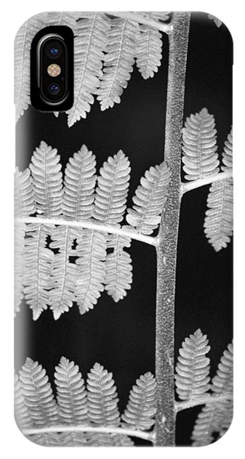 Fern Leaves IPhone Case featuring the photograph Fern Leaves 1 by Donna Corless