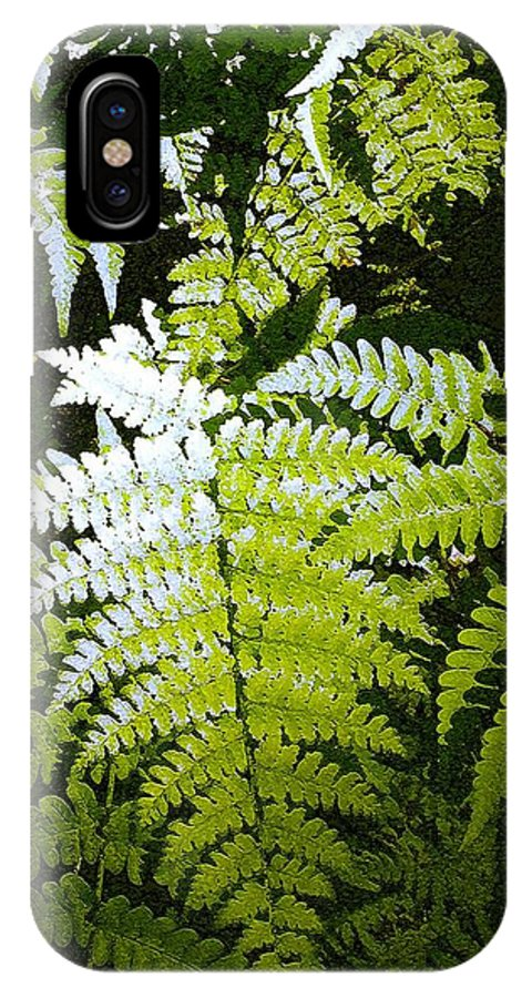 Ferns IPhone Case featuring the photograph Ferns by Nelson Strong