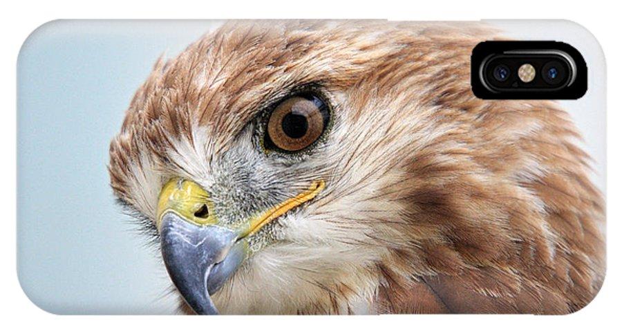 Ferruginous Hawk IPhone X Case featuring the photograph Ferruginous Hawk by Pierre Leclerc Photography