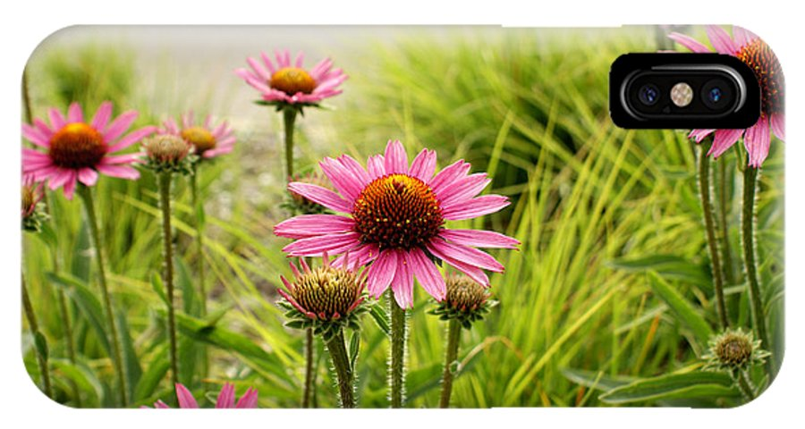 Echinacea IPhone X Case featuring the photograph Field Of Coneflowers by Valerie Fuqua