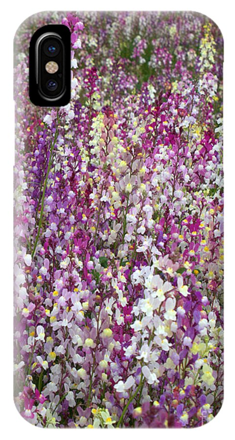 Flowers IPhone X Case featuring the photograph Field Of Multi-colored Flowers by Carol Groenen