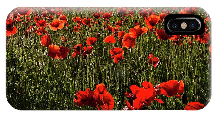 Poppies IPhone X Case featuring the photograph Field Of Poppies by Roger Mullenhour