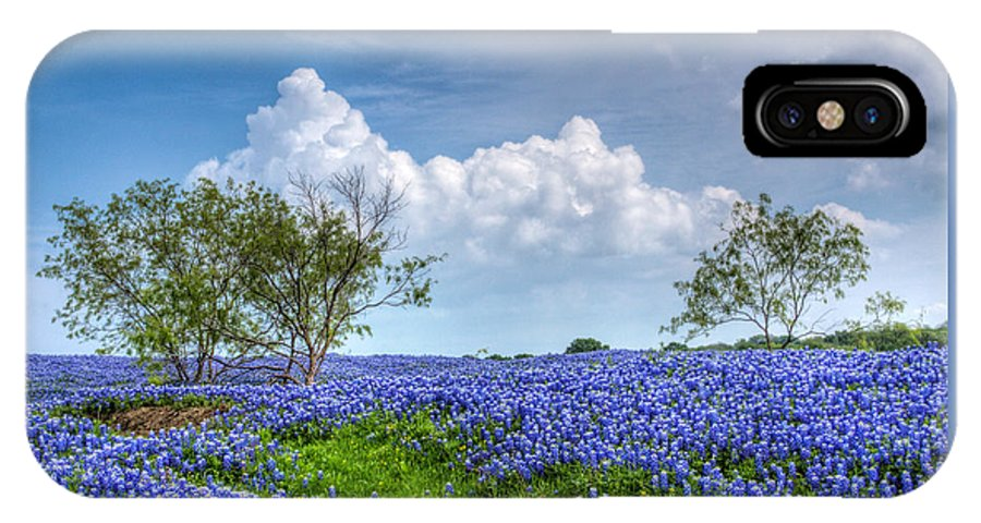 Bloom IPhone X Case featuring the photograph Field Of Texas Bluebonnets by David and Carol Kelly