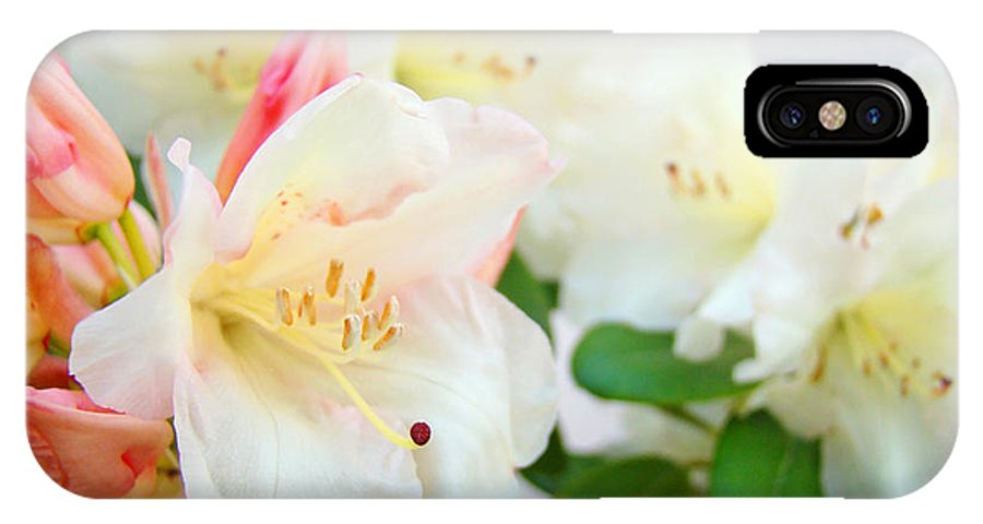 Rhodie IPhone X Case featuring the photograph Fine Art Florals Prints White Pink Rhodies Rhododendrons Baslee Troutman by Baslee Troutman