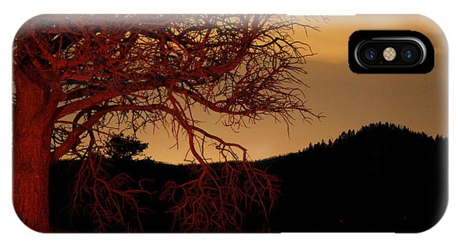Landscape IPhone X Case featuring the photograph Fire Tree by Jeffery Ball