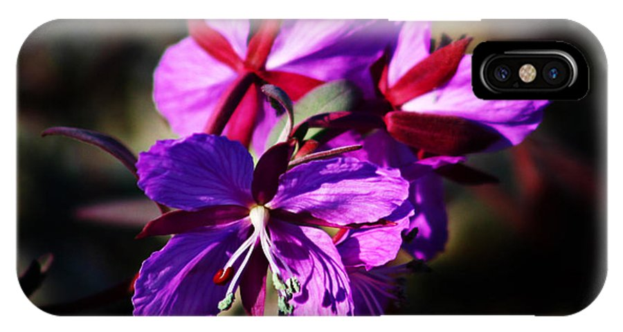 Fireweed IPhone X Case featuring the photograph Fireweed by Anthony Jones