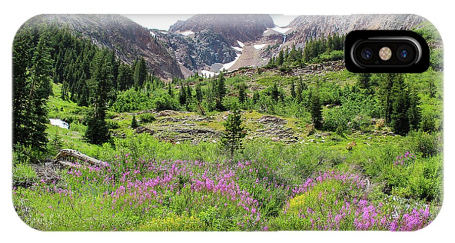 Fireweed IPhone X Case featuring the photograph Fireweed Frenzy by Jennifer McMahon
