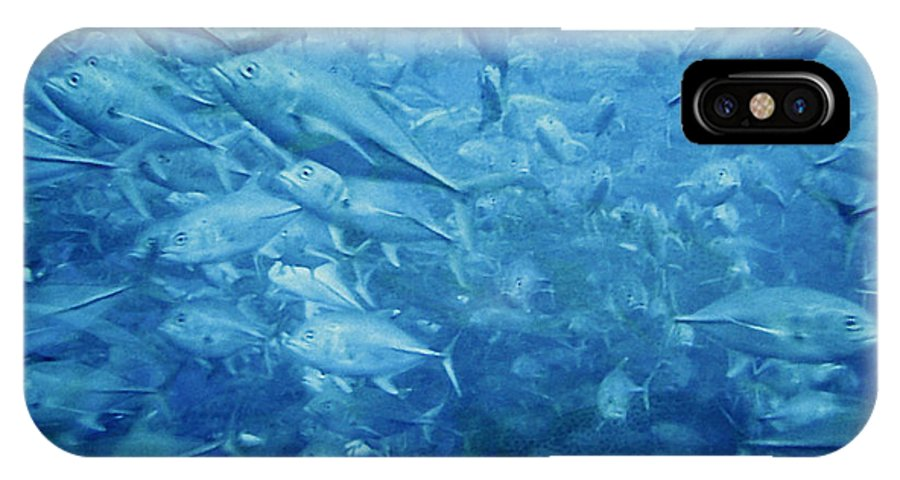 Fish IPhone Case featuring the photograph Fish Schooling Harmonious Patterns Throughout The Sea by Christine Till