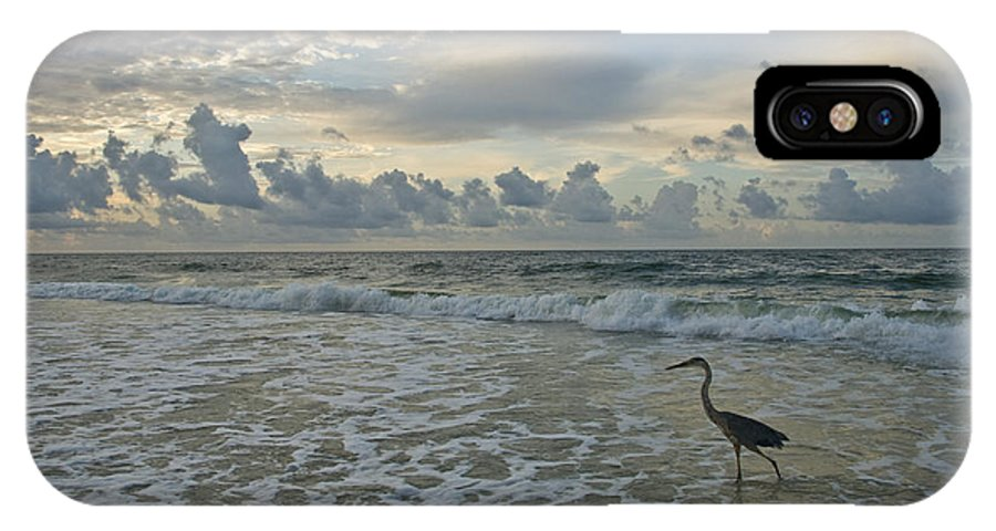 Blue Heron IPhone X Case featuring the photograph Fishing In The Morning by Jennifer Kelly