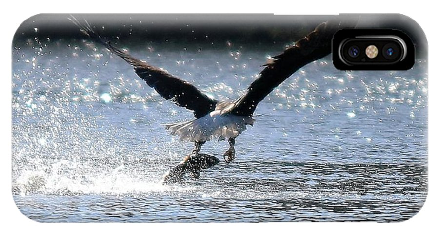 Eagle IPhone X Case featuring the photograph Fishing by Lisa Spero