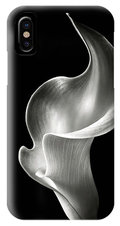 Flower IPhone X Case featuring the photograph Flame Calla Lily In Black And White by Endre Balogh