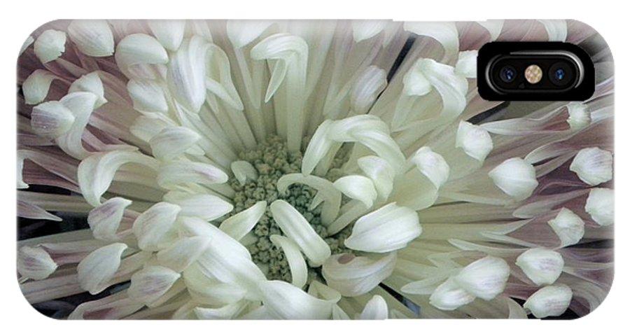 Nature IPhone X Case featuring the photograph Fleur De Feu 3 by Shannon Turek