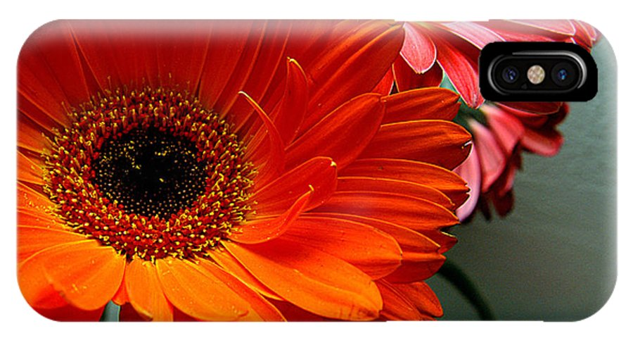 Clay IPhone X Case featuring the photograph Floral Art by Clayton Bruster