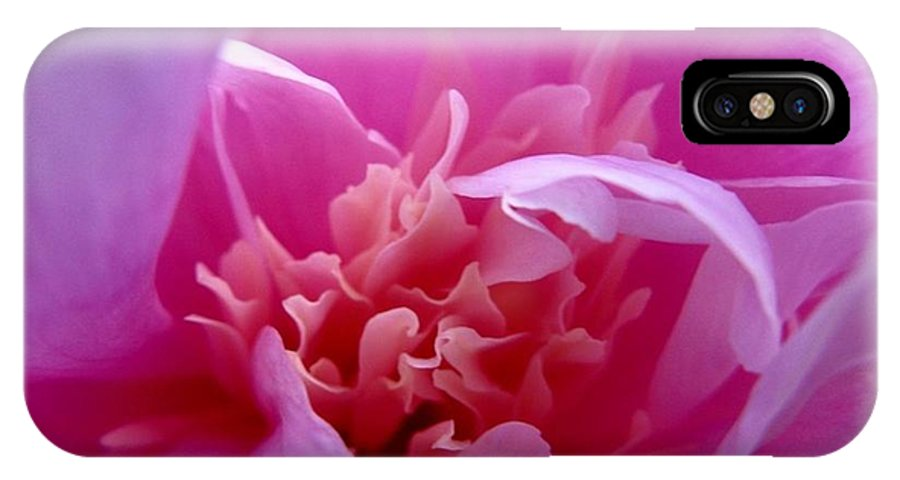 Pink IPhone X Case featuring the photograph Floral Fantasy 2 by Rhonda Barrett