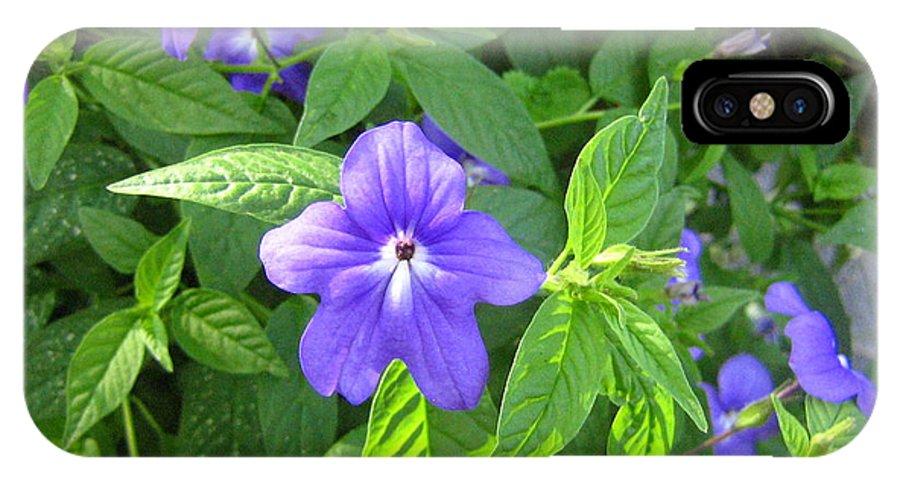 Flower IPhone X Case featuring the photograph Floral Photo by Devorah Shoshanna