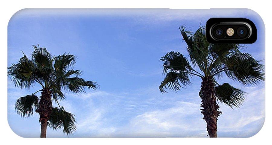 Florida IPhone X Case featuring the photograph Florida Queen Palm  by Allan Hughes