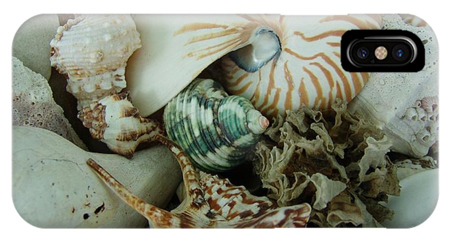 Shell IPhone X Case featuring the photograph Florida Sea Shells by Florene Welebny