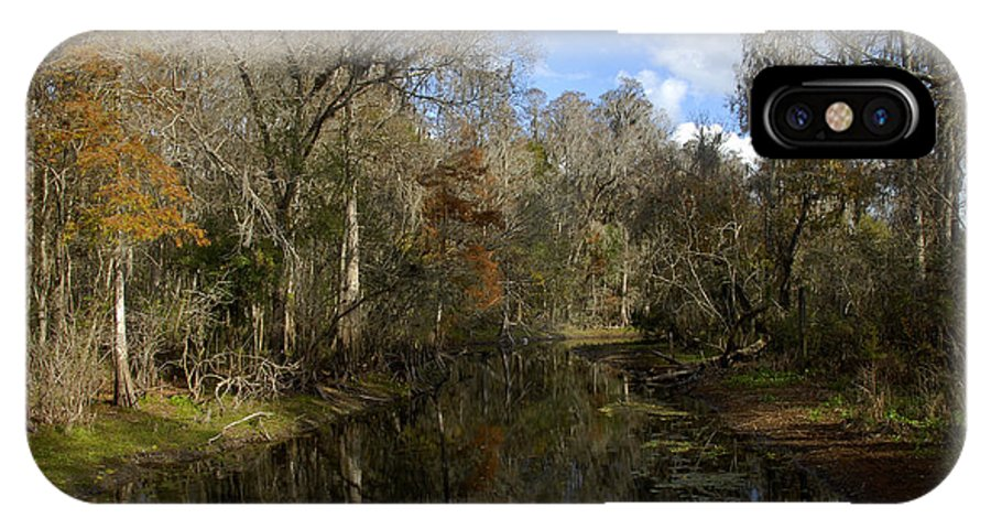 Wetlands IPhone X Case featuring the photograph Florida Wetlands by David Lee Thompson
