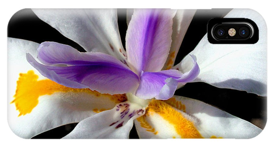 Flowers IPhone X Case featuring the photograph Flower by Anthony Jones
