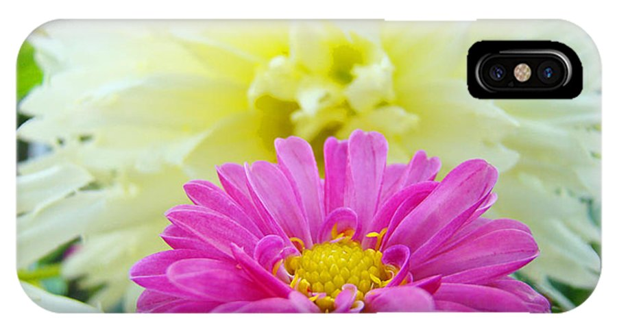Dahlia IPhone X Case featuring the photograph Flower Art Print White Pink Dahlia Floral Canvas Baslee Troutman by Baslee Troutman