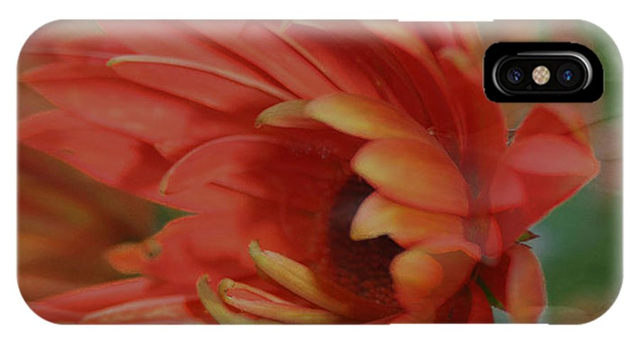 Flowers IPhone X Case featuring the photograph Flower Dreams by Linda Sannuti