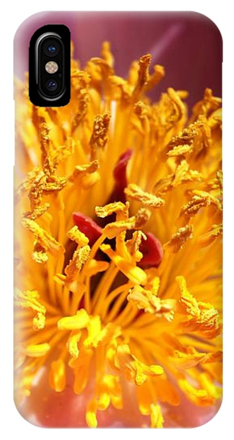 Flower IPhone X Case featuring the photograph Flower by Kenneth Hayes
