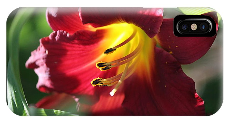 Nature IPhone X Case featuring the photograph Flower by Lisa Spero