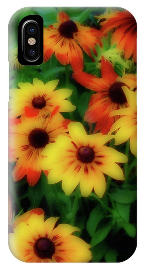 Flowers IPhone X Case featuring the photograph Flower Sunshine by Rochelle Berman