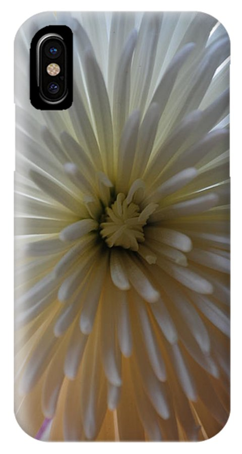 Flower IPhone X Case featuring the photograph Flowering Burst by Eric Liller
