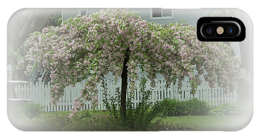 #flowering Tree IPhone X Case featuring the photograph Flowering Tree By Earl's Photography by Earl Eells a