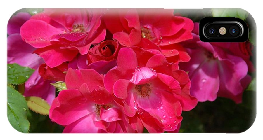 Rose IPhone X / XS Case featuring the photograph Flowers 732 by Joyce StJames