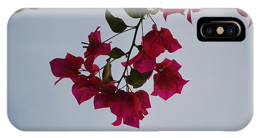 Flowers IPhone X Case featuring the photograph Flowers In The Sky by Rob Hans