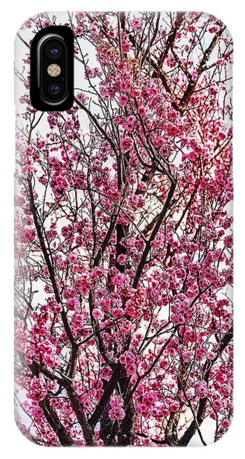 Spring IPhone X Case featuring the photograph Flowers Of Spring by Nancy Marie Ricketts