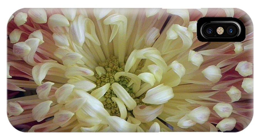 Nature IPhone X Case featuring the photograph Fluer De Feu 2 by Shannon Turek