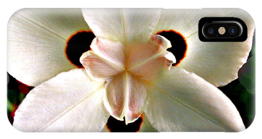 Fluid Flower IPhone X Case featuring the photograph Fluid Flower by Debra   Vatalaro