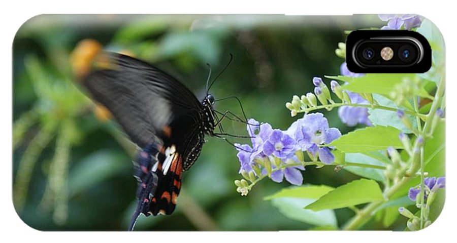 Butterfly IPhone X Case featuring the photograph Fly In Butterfly by Shelley Jones