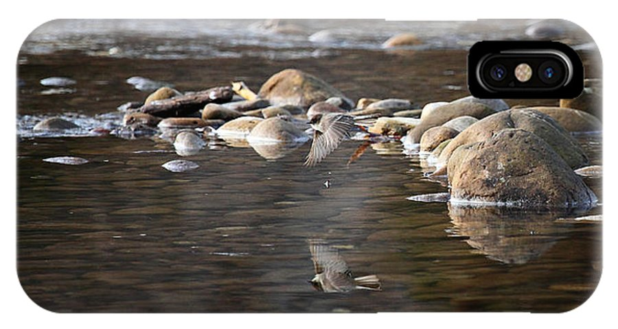 Flycatcher IPhone X Case featuring the photograph Flycatcher Hunting on the Buffalo River by Michael Dougherty