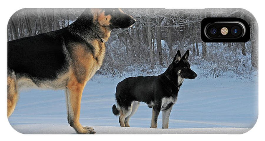 Black IPhone X Case featuring the photograph Focused by Linda Seacord