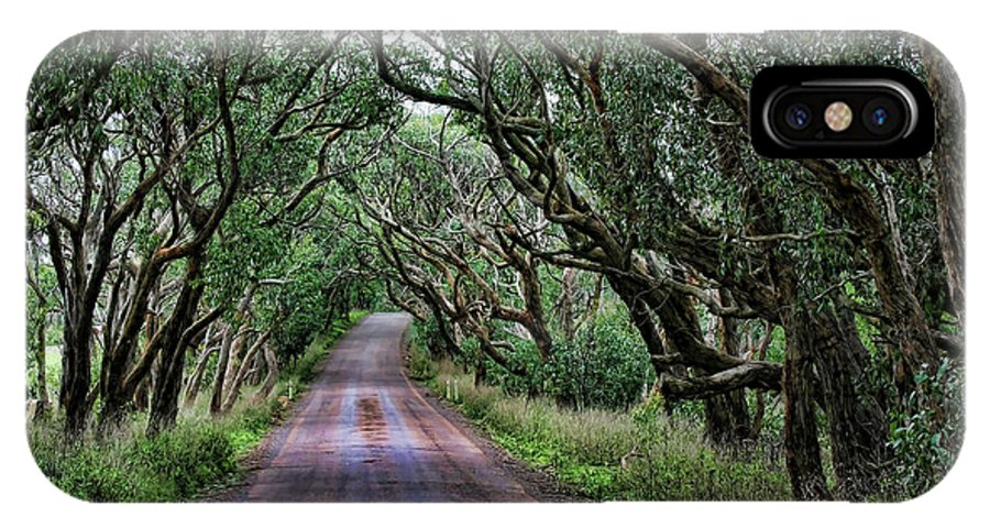 Trees IPhone X Case featuring the photograph Forest Corridor by Douglas Barnard