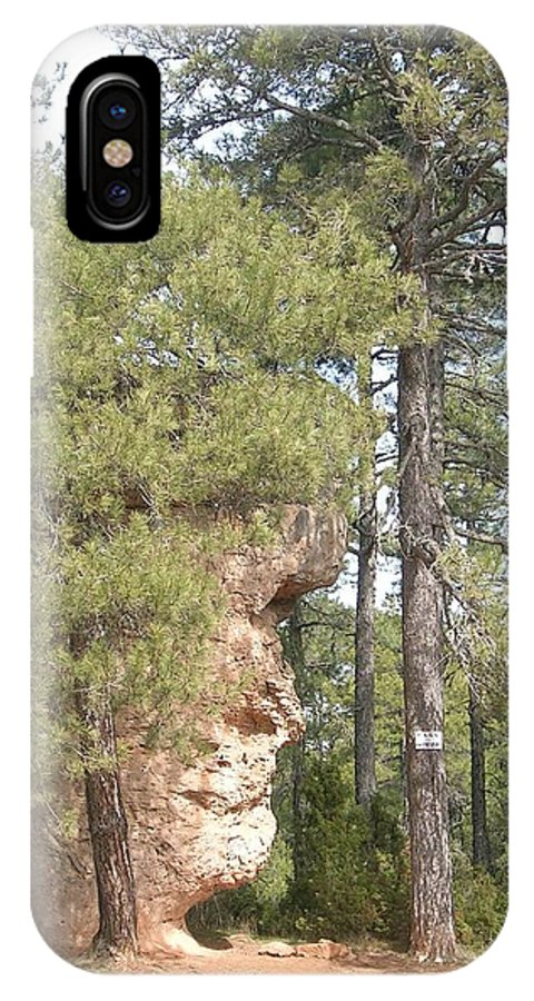 Landscape IPhone X Case featuring the photograph Forest Face by Valerie Ornstein