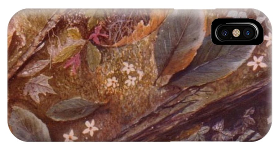 Leaves; Forest; Flowers IPhone Case featuring the painting Forest Floor by Ben Kiger