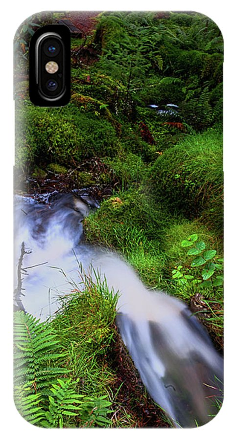 Jenny Rainbow Fine Art Photography IPhone X Case featuring the photograph Forest Stream. Benmore Botanic Garden by Jenny Rainbow